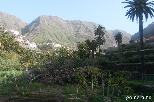 La Gomera Valle Gran Rey Lomo del balo