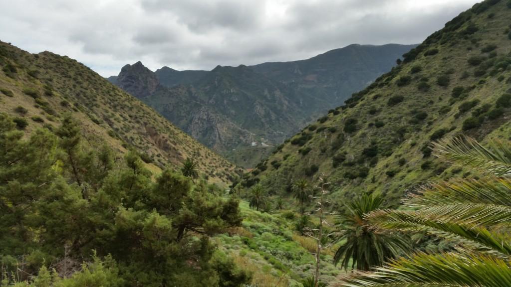 I dalgången som sluttar ner mot Vallehermoso